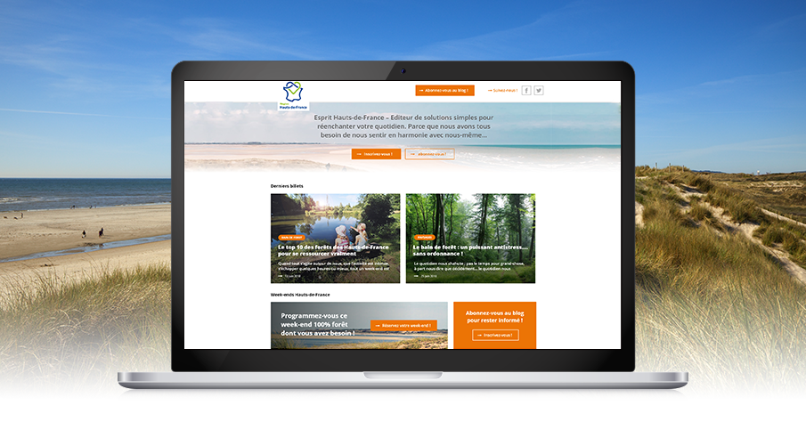 developpement-blog-cms-hubspot-crt-hdf-2